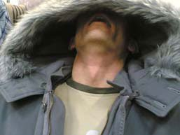 Giant hooded Stef