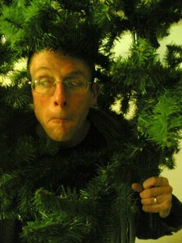 Stef wearing Christmas tree