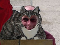 Balding cat spotted at tourist attraction. Call the RSPCA